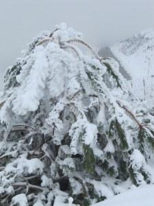 primeras nieves en la Sierra de Béjar- El Hotel Rural El Balcón del Pueblo