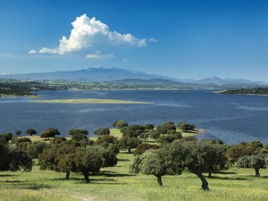 Pantano de Santa Teresa-Amantes del birding